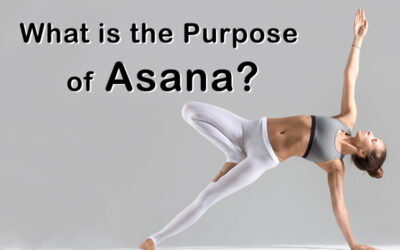 What is the Purpose of Asana?
